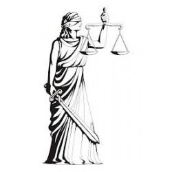 La recherche de l'égalité peut-elle être injuste ?