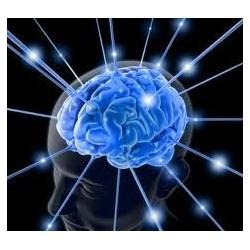 La matière et l'esprit